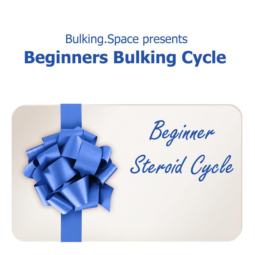 beginners-bulking-cycle
