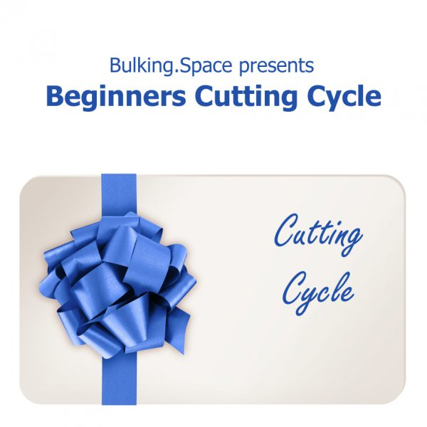 beginners-cutting-cycle-norway